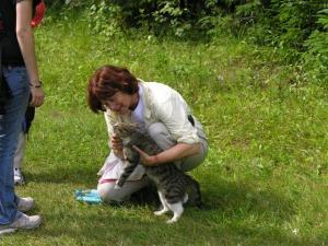 Holly petting a kitty at the IVV olympiad in Estonia